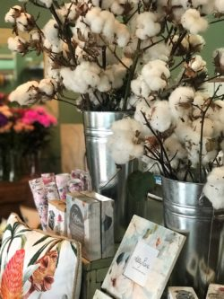 Find the perfect gift at Little Magnolia Florist