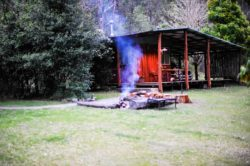 Clarence River Wilderness Lodge Cabin